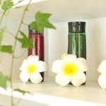 大人かわいい医療用ウイッグ/医療かつらのカットが出来る千葉県市川個室美容室